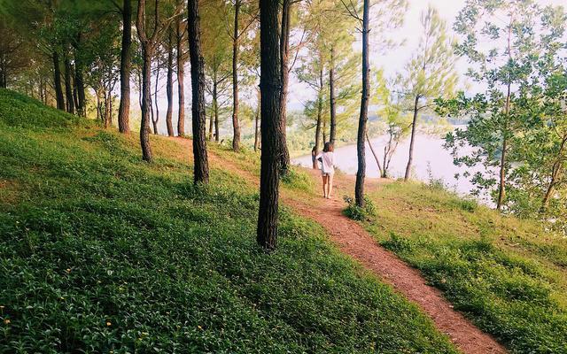 Đồi Vọng Cảnh - địa điểm ngắm cảnh tuyệt đẹp